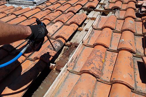 traitement charpente bois ecobat termites toit