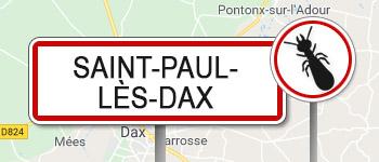 Termites Saint-Paul-lès-Dax