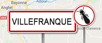Termites Villefranque