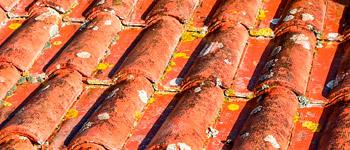 mousse lichen toiture tuiles ecobat Nettoyage toiture Lahonce