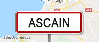 Traitement bois Ascain